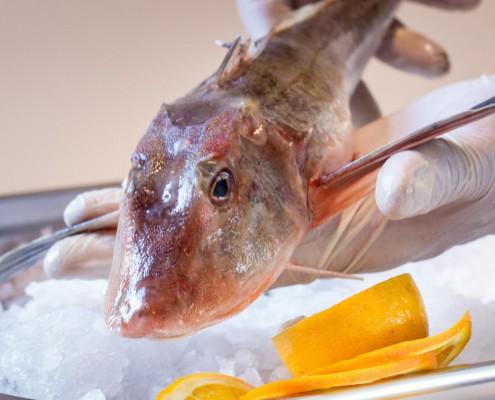 Fischgerichte auf unserer Speisekarte